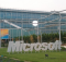Microsoft oferece cursos gratuitos online na área de Tecnologia